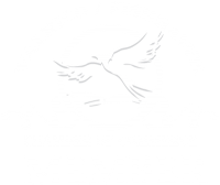 Valrico Fishhawk Chamber of Commerce