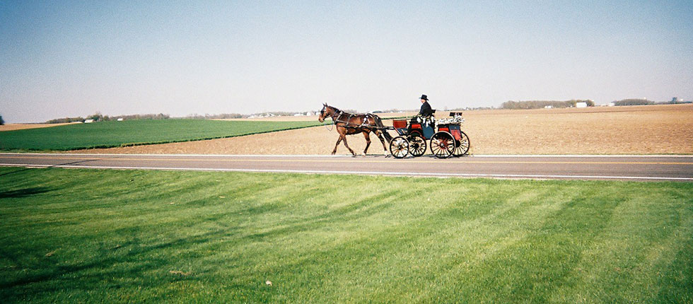 Putting the Cart Before the Horse- Assessing Your Marketing Efforts Part 1